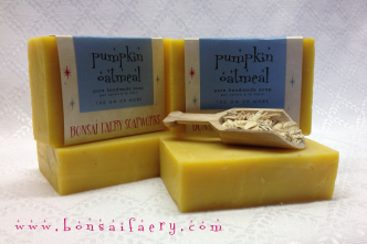 pumpkin oatmeal bar soap